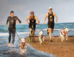 Triathlon con il cane? Perché no!