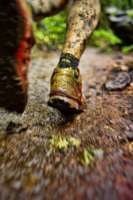scarpe da running fango